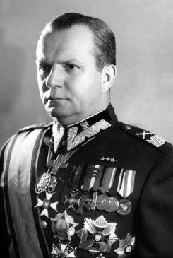 Маршал Польши Михал Жимерский