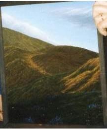 А. ТИВОДАР ПОЛОНИНА, 1990, зникнення 17.01.2008 з Закарпаття