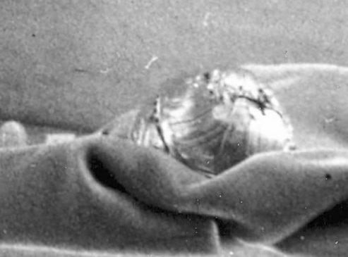 1889 год - пасхальное яйцо«Несессер» (Nécessaire)