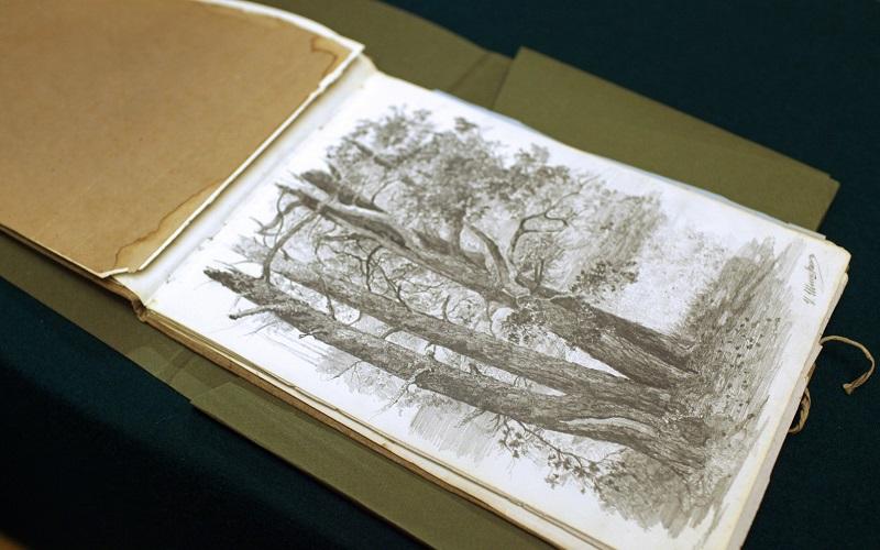 Альбом рисунков Ольги Лагоды-Шишкиной