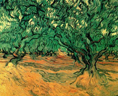 Olive Trees, 1899, Vincent van Gogh
