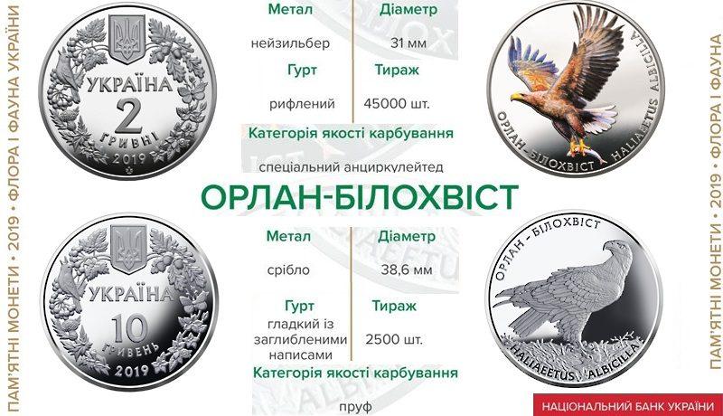 НБУ выпустил памятную монету «Орлан-білохвіст» в серебре и нейзильбере